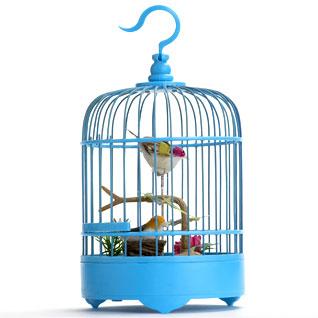 REX_birdcage