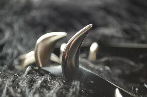 Horns_1