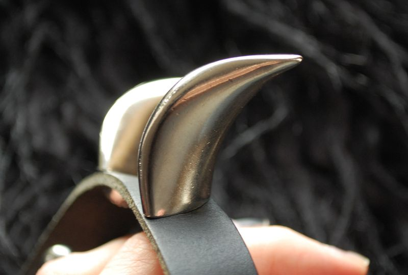 Horns_2