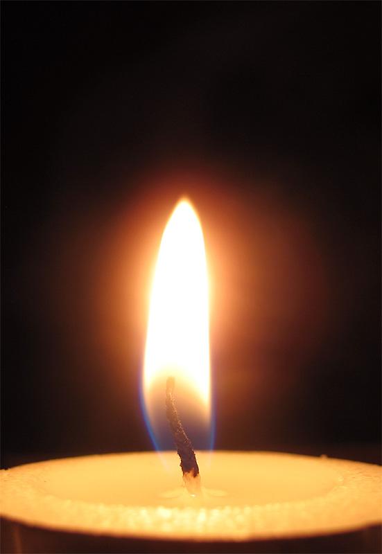 Moth &flame