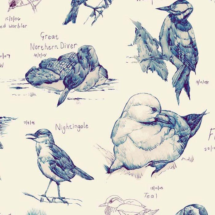 Ornithology detail