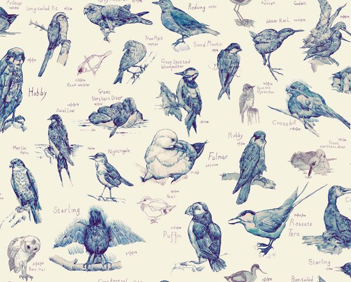 Ornithology A
