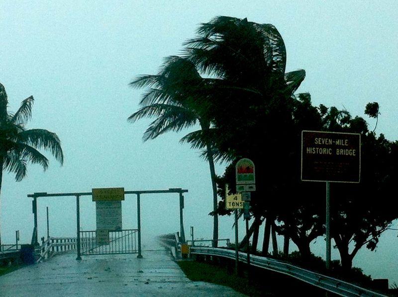 Storm florida