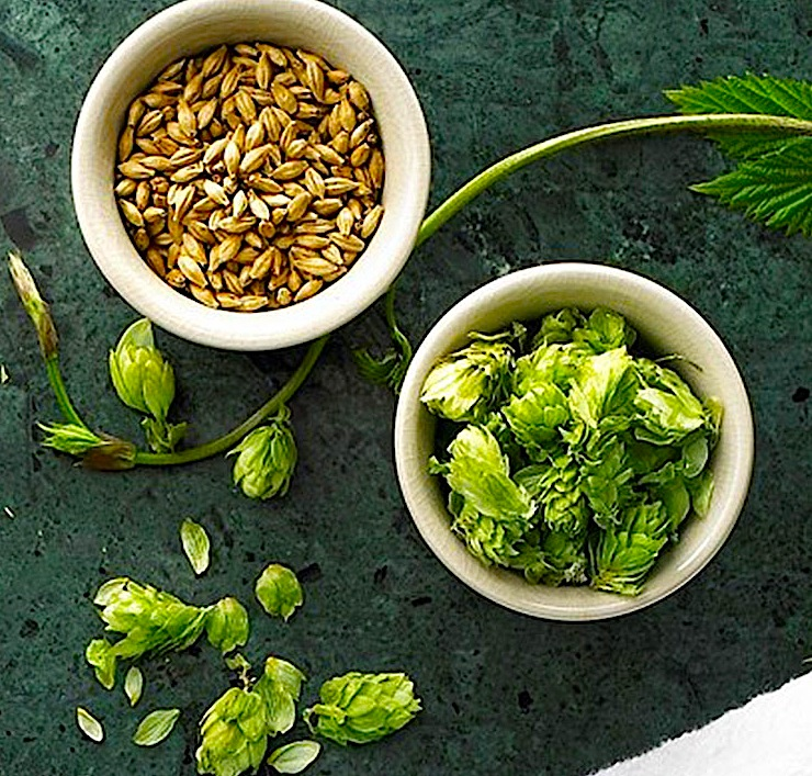 Carlsberg-beer-beauty-ingredients-IIHIH